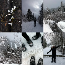 Collage 22 Snowshoeing
