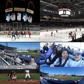 Collage 32 Baseball & ice hockey
